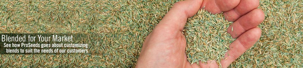 proseeds, turf and forage grass seed